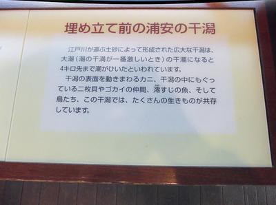 10月歩こう会 01301.jpg