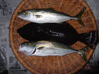 ヒラメ釣り 01601.jpg