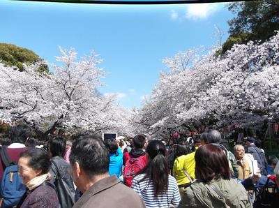 上野公園 01501.jpg
