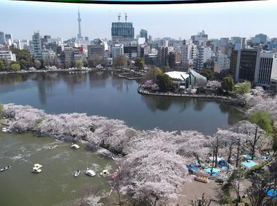 上野公園 04701.jpg