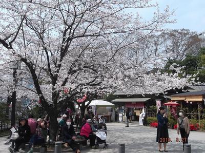 千葉公園 00301.jpg