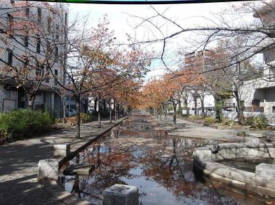 奥浅草 01401.jpg