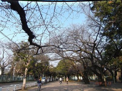散歩 00701.jpg