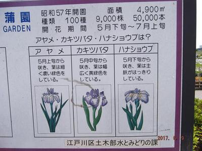 歩こう会6月 00901.jpg