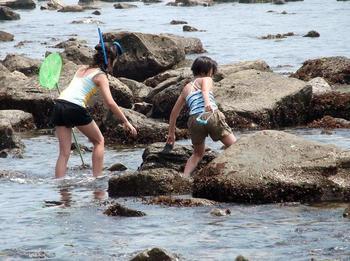 銚子の浜 00901.jpg