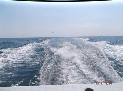 ヒラメ釣り 00301.jpg
