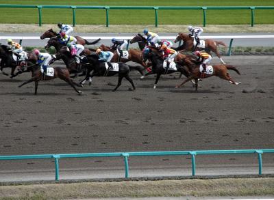 中山競馬場 01101.jpg