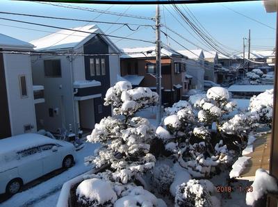 初雪 00601.jpg