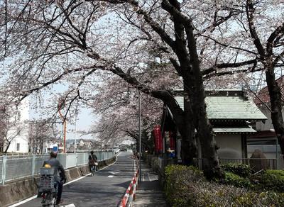 弘法寺 04501.jpg