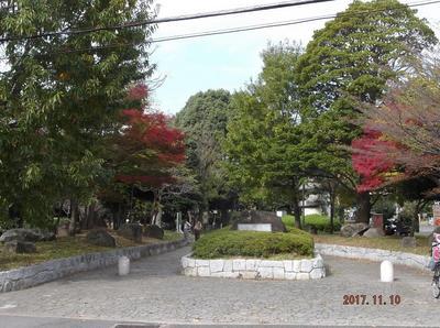 歩こう会11月 02501.jpg