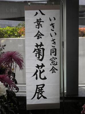 菊花展 00601.jpg