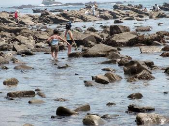 銚子の浜 00601.jpg