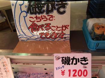 銚子の浜 01601.jpg